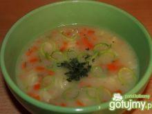 Zupa porowa z kapustą