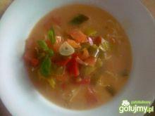 Zupa porowa z papryką i pomidorami