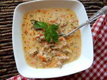 Zupa serowa z mięsem mielonym i tartą cebulką