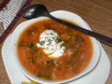 Zupa śmieciuszka pomidorowa Niani