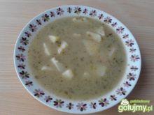 Zupa szczawiowa (szczawiówka)