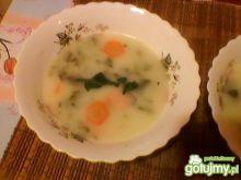 zupa szczawiowa wg justynak223