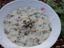 Zupa szczawiowa z pęczakiem