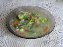 Zupa warzywna na skrzydłach z kaczki