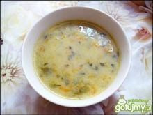 Zupa wiosenna