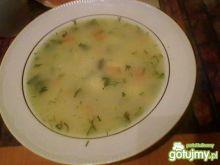 Zupa wiosenna z warzyw
