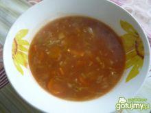 zupa z białej kapusty z koncentratem