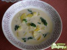 Zupa z cukinii i szpinaku