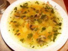 Zupa z dodatkiem pieczarek