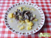 Zupa z grzybów leśnych z koperkiem