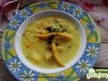 Zupa z kalarepy i fasolki zagęszczana