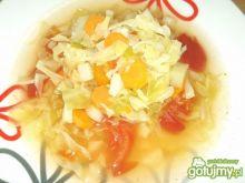 Zupa z młodą kapustą i pomidorami