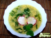 Zupa z młodej rzodkiewki.