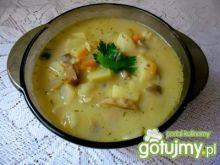 Zupa z pieczarek , ryżu i ziemniaków