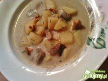 Zupa z podgrzybków i kurek