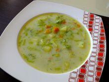 Zupa z pora (bezmięsna)