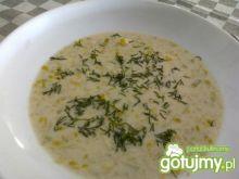 Zupa z porów 5