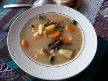 Zupa z suszonych grzybów leśnych