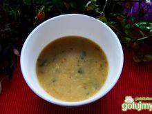 zupa z świeżych borowików