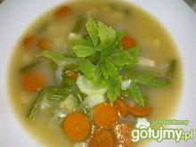 Zupa z warzywami i lubczykiem.