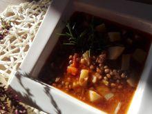 Zupa z zielonej soczewicy