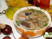 Zupa ze świeżych grzybów wg Buni