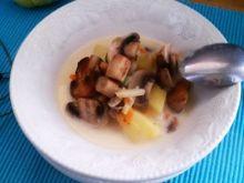 Zupa ze świeżych pieczarek