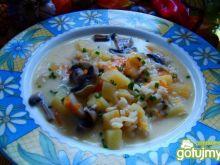 Zupka- ryżanka pieczarkowa