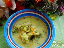 Zupka z brokuła i kalarepy