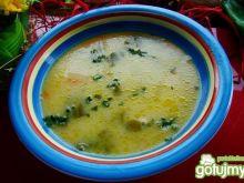Zupka z młodej kapusty i kalarepy