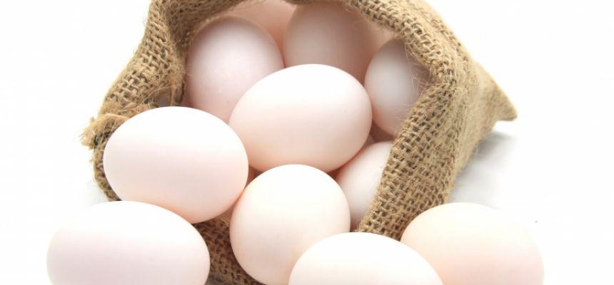 Jaja kacze