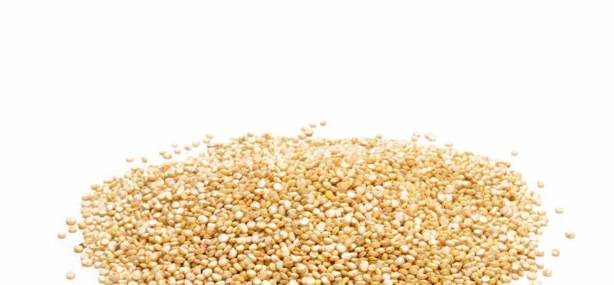 Quinoa biała