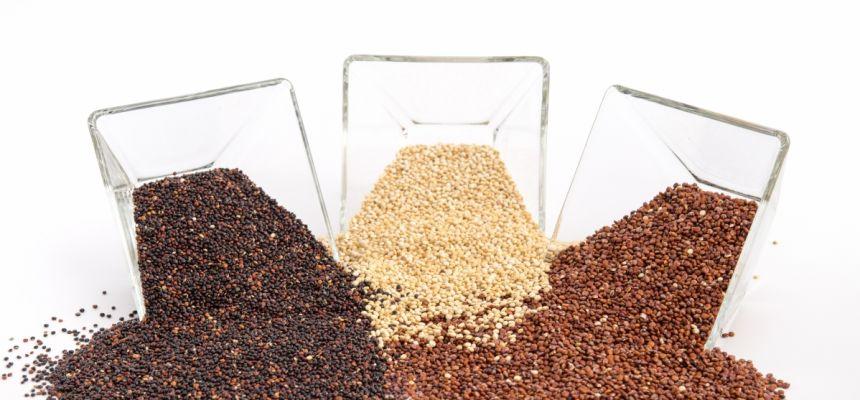 Quinoa ziarno