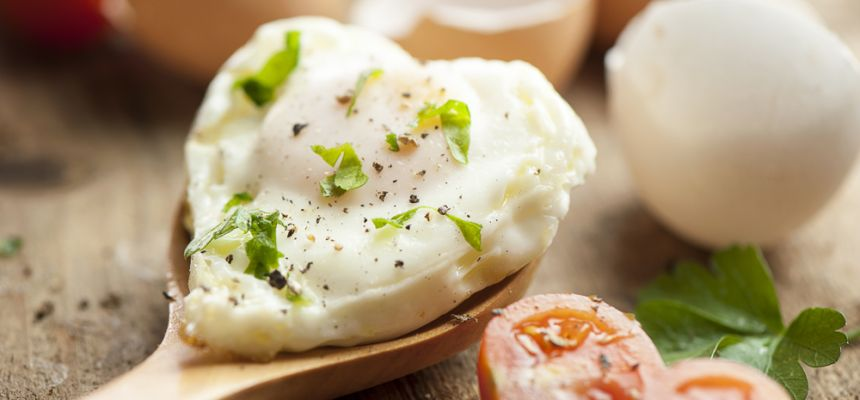 Białko jaja kurzego
