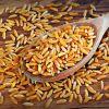 Kamut - najstarsza pszenica świata