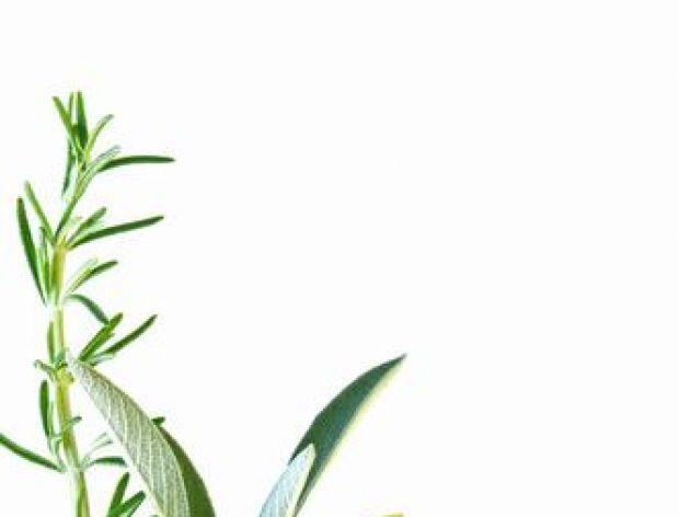 Aby zioła nie straciły aromatu