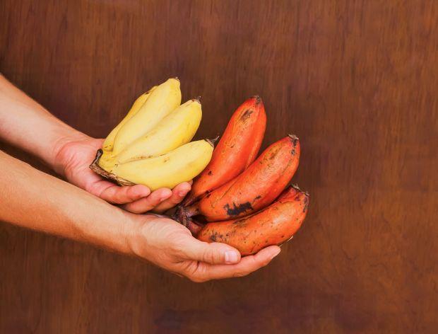 Jak jeść czerwone banany?