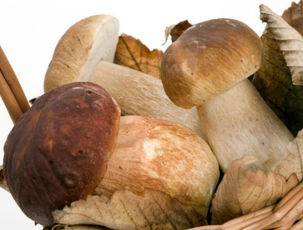 Idealna patelnia do smażenia grzybów