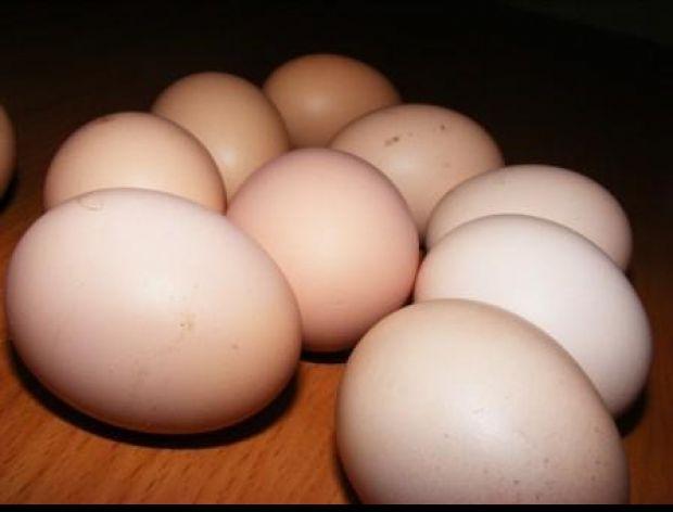 Jajko świeże czy nie świeże ?
