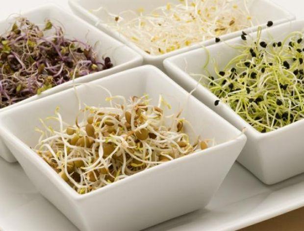 Kiełki - rodzaje i zastosowanie w kuchni