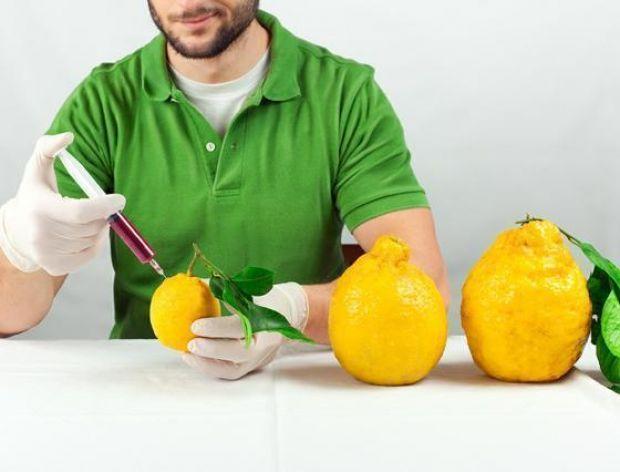 Które sklepy w Polsce sprzedają żywność GMO?