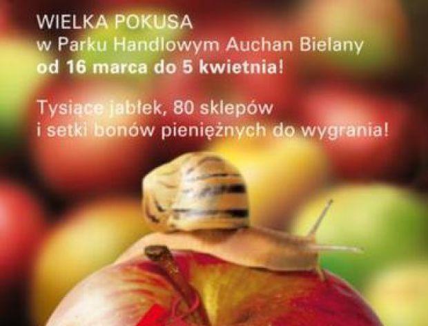 Kusząca propozycja we Wrocławiu