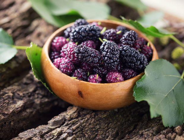 Morwa - małe, pyszne i zdrowe owoce