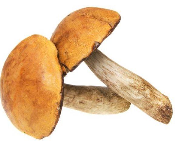 Mycie grzybów
