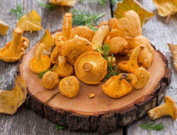 Najsmaczniejsze dania z leśnymi kurkami