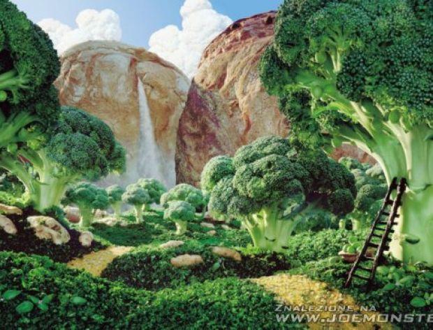 Niezwykłe krajobrazy z jedzenia