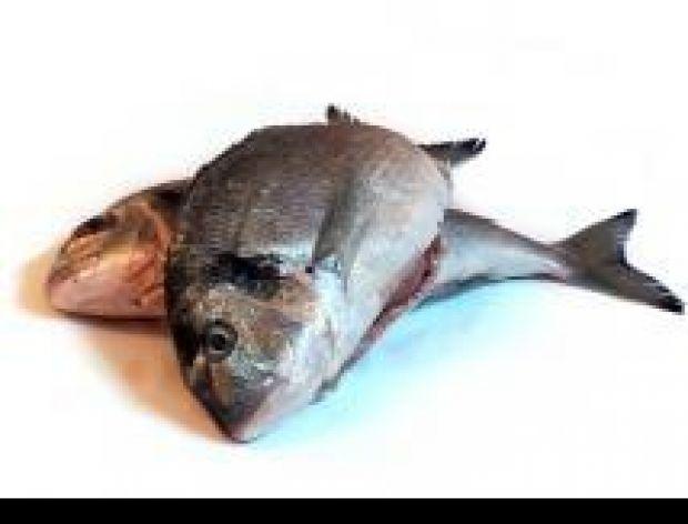 Przyprawianie ryb
