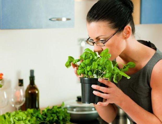 Przyprawy ziołowe do mięs