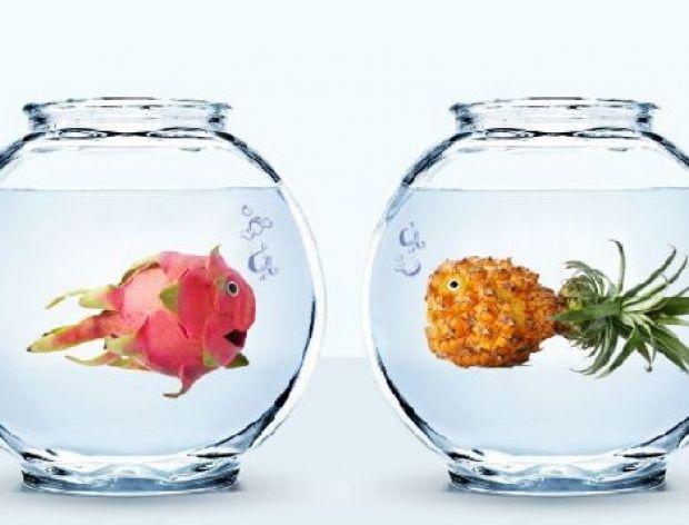 Warzywno-owocowe dzieła sztuki