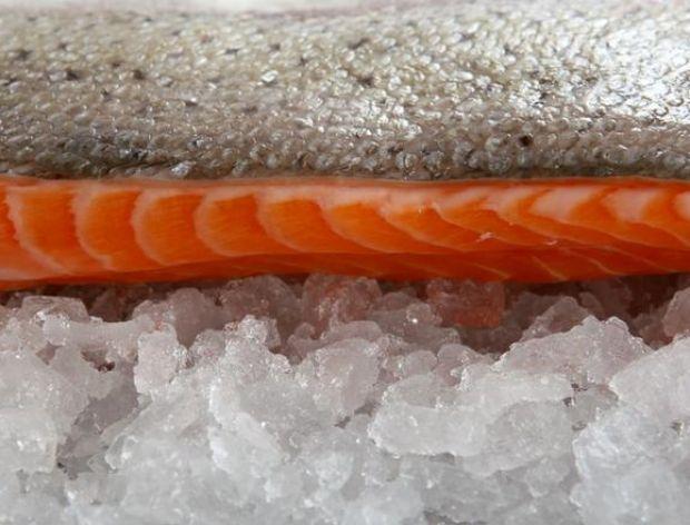 Ryby i małże - czas zamrażania